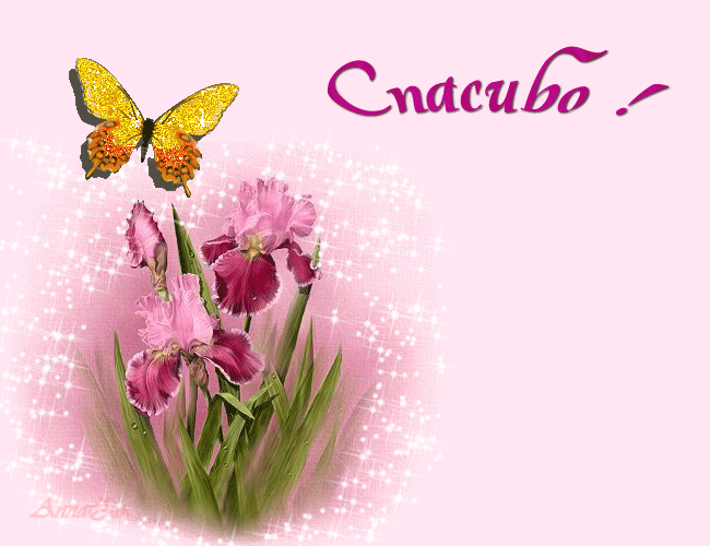 http://www.tvoyakniga.ru/images/forum_uploads/75_201403301021.png