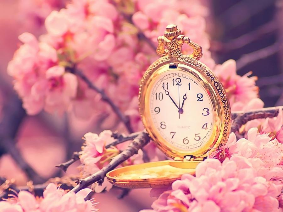 BB-код. Картинки времена года. Ваша ссылка для скачивания Часы весна фото 3 подготавливается