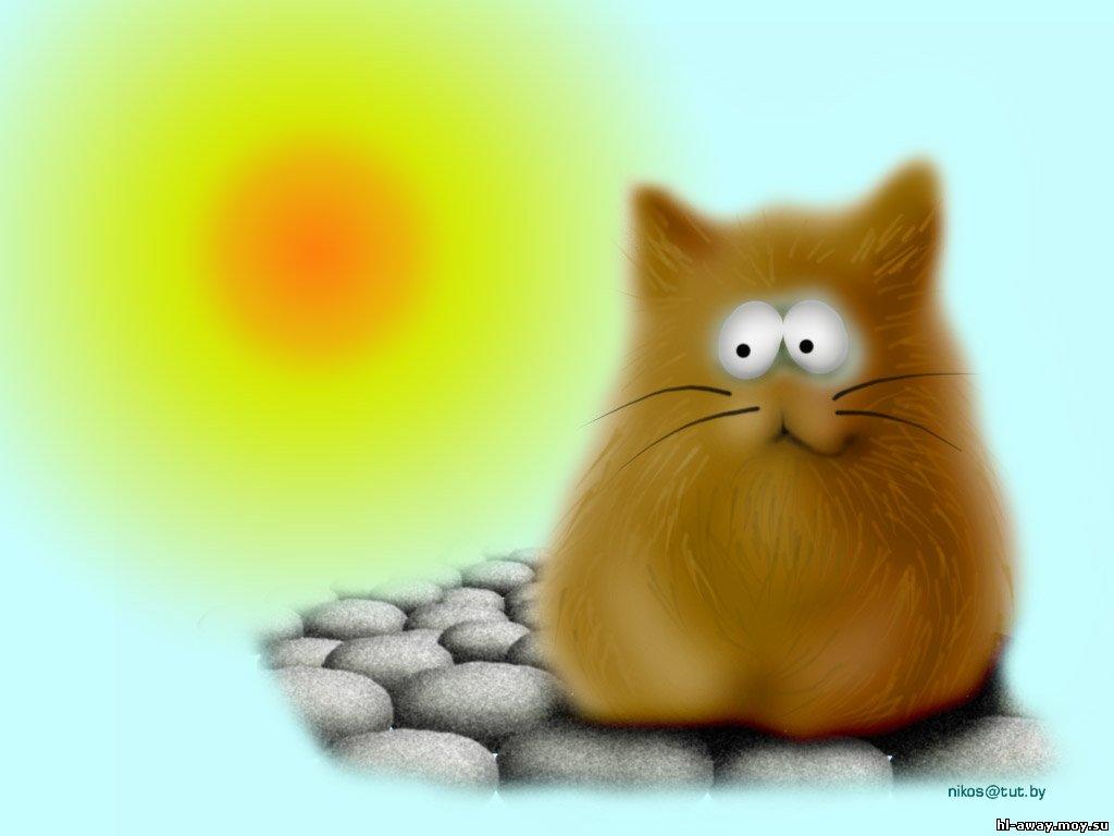 Кот и солнце картинки
